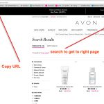 Avon Charts To Help You Sell Online 2017