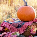 November, 2020 Social Media Posts Calendar